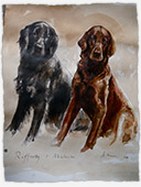 Aviva Halter Hurn Dog Portraits - Rafferty and Malachi